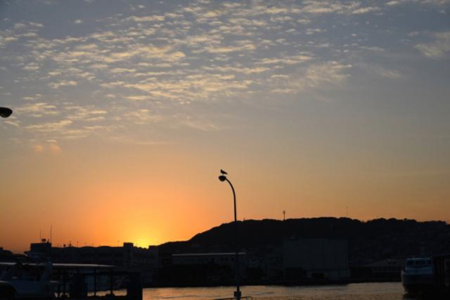 朝の太陽の光